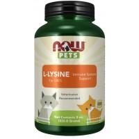 L Lysine for Cats Powder Now foods Pets