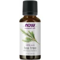 TEA TREE OIL  1oz NOW Foods